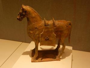 DSCN4829-Xinjiang Horse-1
